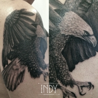 eagle tatouage indy tattoo artowrk aigle plume vol fly shouldertattoo tatouage tattooist artist realistic realiste tattoo