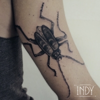 bugs insectes capricorne indy tattoo tatouage artwork dots arm ink paris france