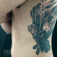 tat tattoo tatouage paris france PACA Cannes nimes tattooist tatoueur tatoueuse ink inker artist flash dermographie art indy artwork indy-artwork owl hibou foret forest boulots trees tree nature landscape double exposition double exposure paysage dot dots dotwork dotworker