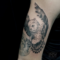 tat night nuit bird oiseau tattoo tatouage paris france tattooist tatoueur tatoueuse art bodyart ink inked dot dotwork graphic inker dotworker artist owl hibou vole fly foret forest double exposition exposure moon nocturne